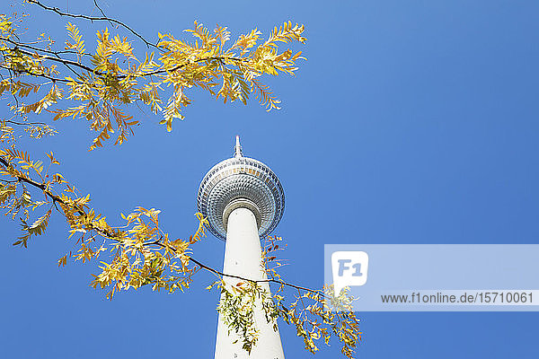 Germany  Berlin  Low angle view ofBerlin TV Tower standing against clear blue sky