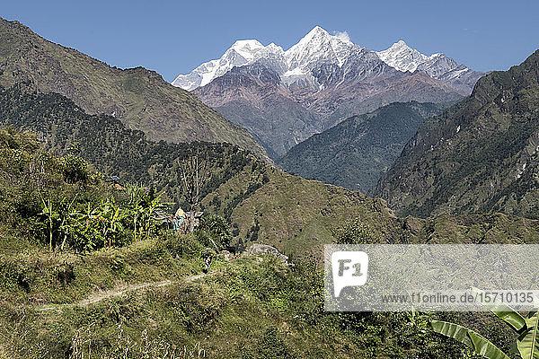 Dobang mit Dhaulagiri I  Dhaulagiri-Rundwanderung  Himalaya  Nepal