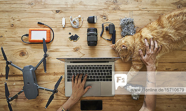 Person sitting at table with photografic equipment and ginger cat  using laptop  overhead view