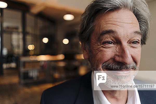 Portait of smiling senior businessman in office