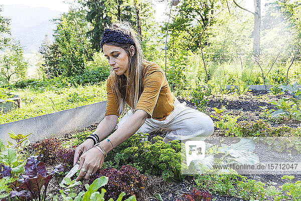 Gartenarbeit von Frauen Gartenarbeit von Frauen