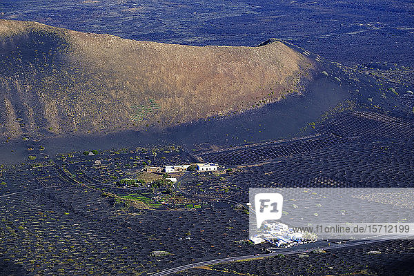 Spanien,  Kanarische Inseln,  Lanzarote,  Region La Geria,  Hochwinkelansicht von Weinbergen und Hügeln