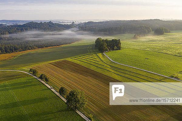 Deutschland  Bayern  Dietramszell  Luftaufnahme von ländlichen Feldern in der Nebeldämmerung