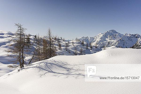 Berglandschaft mit Neuschnee  Valmalenco  Italien