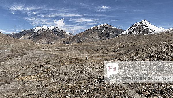 Hidden Valley  Sechi Lek  Dhampus Peak  Dhaulagiri Circuit Trek  Himalaya  Nepal