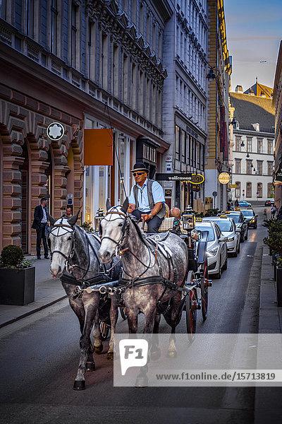 Coach  Habsburgergasse  Vienna  Austria  Europe