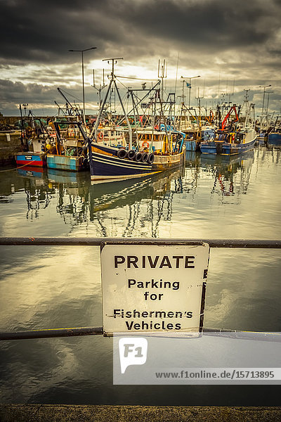 Fishing boats in harbour  Anstruther  Fife  Scotland  Europe