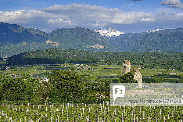Italien,  Südtirol,  Eppan an der Weinstrasse,  Frühlingsweinberge und Dörfer im Etschtal