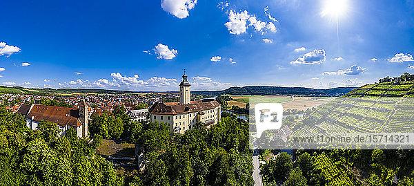 Deutschland,  Baden-Württemberg,  Odenwald,  Gundelsheim,  Luftaufnahme von Schloss Horneck