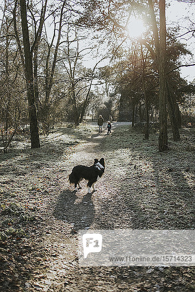 Mother and daughter with border collie in the woods