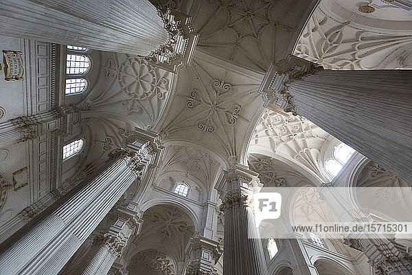 Spain  Andalusia  Granada  Low angle view of columns and ceiling of Granada cathedral