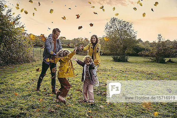 Happy family playing with autumn leaves on a meadow