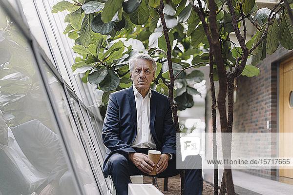 Porträt eines seriösen  hochrangigen Geschäftsmannes  der eine Pause im Amt macht