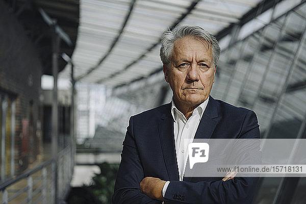 Porträt eines seriösen leitenden Geschäftsmannes im Amt