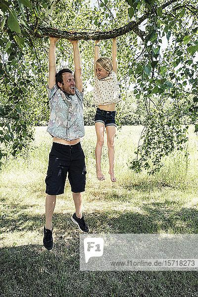 Vater und Tochter hängen an einem Birkenzweig