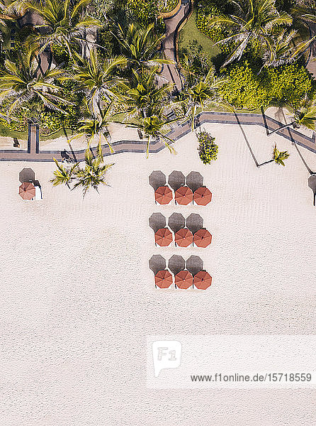 Indonesia  Bali  Aerial view of umbrellas and palms on beach