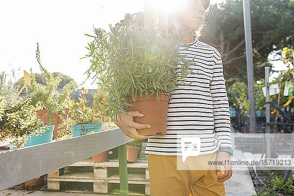 Boy with potted plant at plant nursery