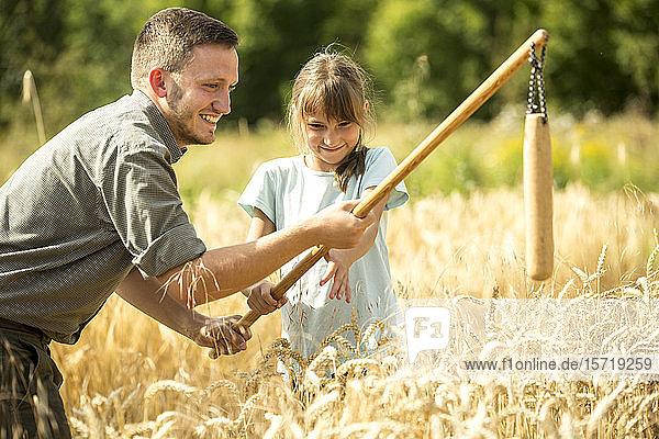 Kinder lernen  wie man Weizen auf dem Feld schleudert