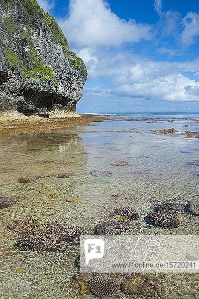 Avaiki Gezeitenbecken  Südpazifik  Niue  Ozeanien