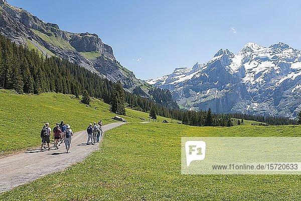 Wanderer auf dem Weg zum Oeschinensee  hinten Gipfel von Wildi Frau und Blüemlisalp  Kandersteg  Berner Oberland  Kanton Bern  Schweiz  Europa