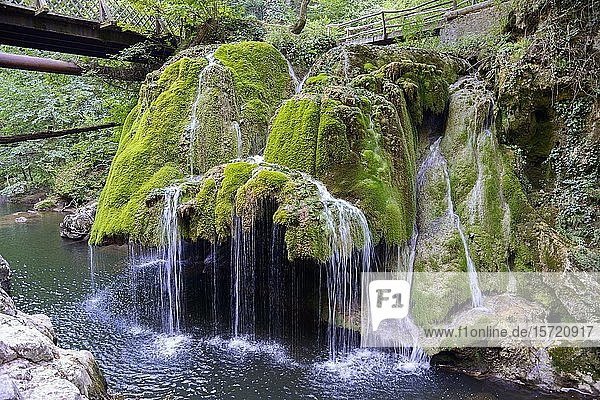 Bigar-Wasserfall im Nationalpark Cheile Nerei-Beusnita  Banat  Rumänien  Europa