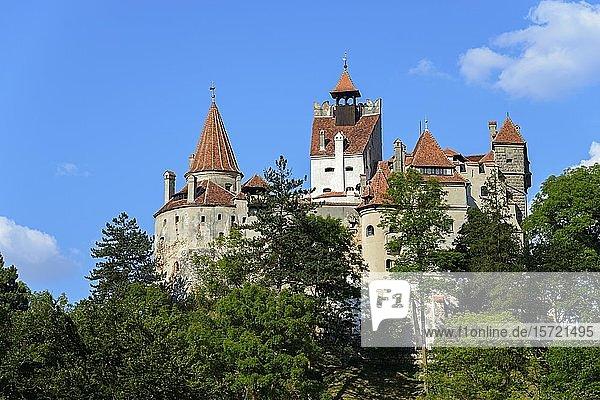Schloss Bran  Bran  Siebenbürgen  Rumänien  Europa