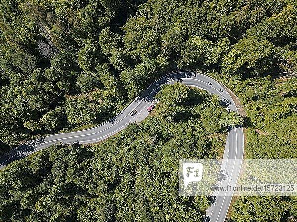 Serpentine  Kehre einer Landstraße durch nadelwald in den Bergen von oben  Luftaufnahme  Kochel  Oberbayern  Bayern  Deutschland  Europa