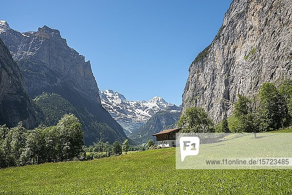 Berglandschaft im Lauterbrunnental  Lauterbrunnen  Berner Oberland  Schweiz  Europa