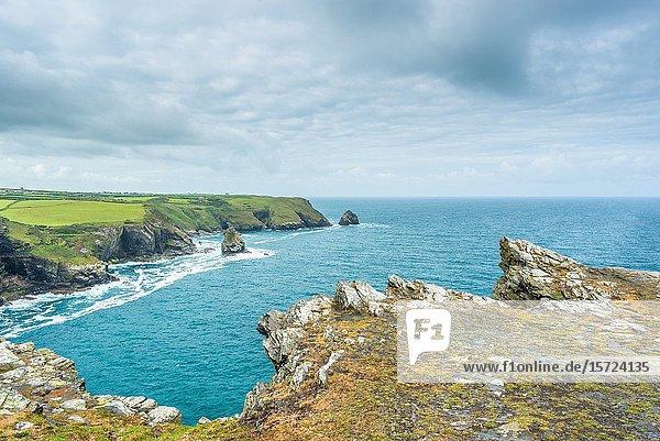 Coastal views from Willapark Lookout near Boscastle on the Atlantic coast of Cornwall  England  UK.