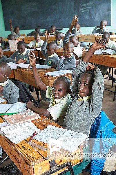 Schülerinnen und Schüler im Klassenzimmer beim Unterricht der Primary School  Mirisa-Academy  Nakuru  Kenia  Afrika