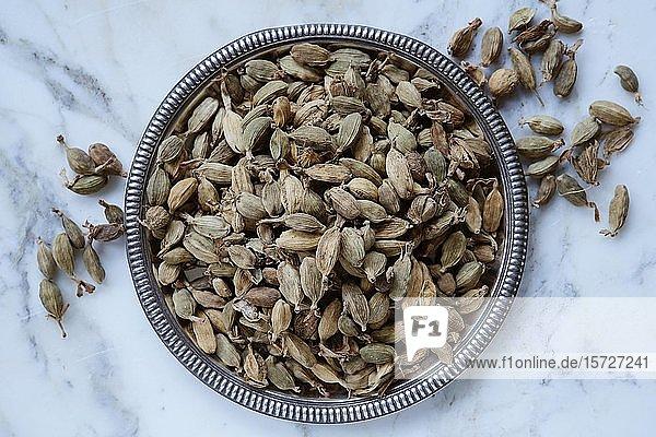 Kardamom (Elettaria)  Samenkapseln in einer Schale  Indien  Asien