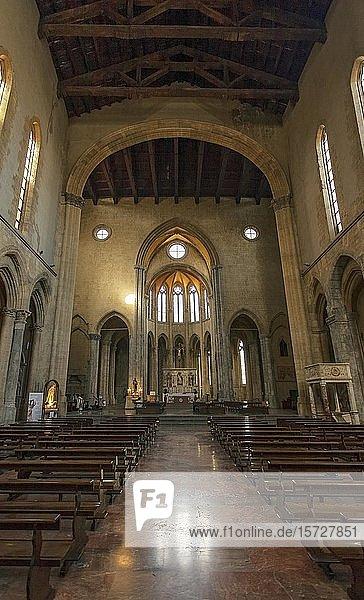 Gotische Kirche San Lorenzo Maggiore  Neapel  Kampanien  Italien  Europa