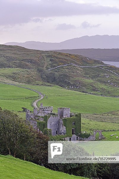 Clifden Castle  ruined manor house near Clifden  west coast  County of Galway  Connemara  Republic of Ireland  North-western Europe.