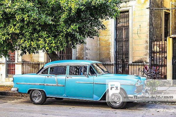 Old American car in the streets of Old Havana  Republic of Cuba  Caribbean  Central America.