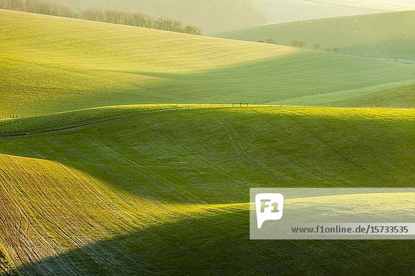Sunrise in South Downs National Park  West Sussex  England.