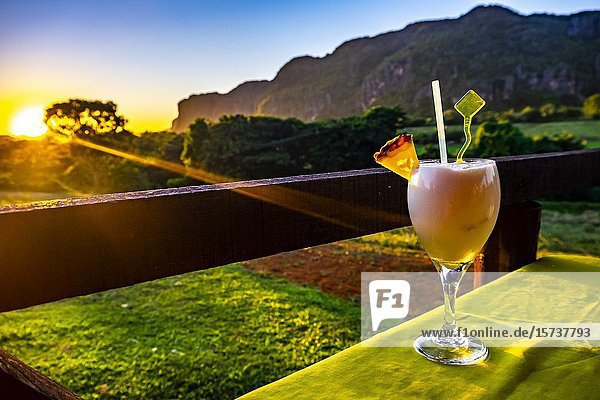 Coctail at sunset in tropical nature of Vinales  Republic of Cuba  Caribbean  Central America.