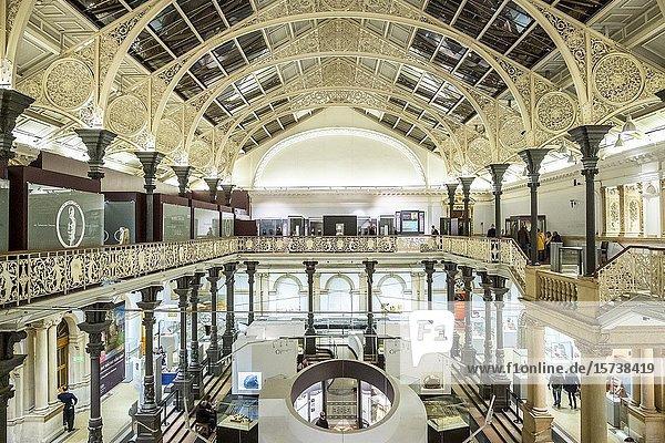 National Museum of Ireland - Archaeology  Dublin  Ireland.