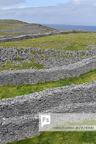 Defensive concentric dry stone walls of Dun Aengus  prehistoric hill fort  Inishmore  the largest of the Aran Islands  Galway Bay  West Coast  Republic of Ireland  North-western Europe.