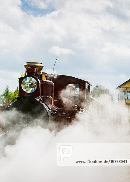 Narrow guage railway locomotive. Wroxham Norfolk Broads England UK.