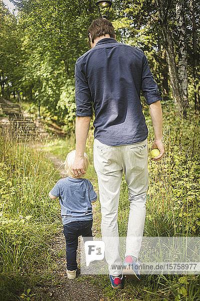 Rückansicht in voller Länge von Vater und Sohn beim Spaziergang inmitten von Pflanzen im Park