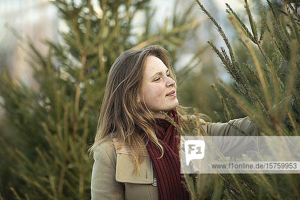 Frauen kaufen den Weihnachtsbaum ein  Weihnachtsmarkt  Freiburg  Deutschland