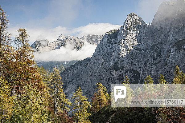 Scenic view of Julian Alps  Vrsic Pass  Triglav National Park  Upper Carniola  Slovenia