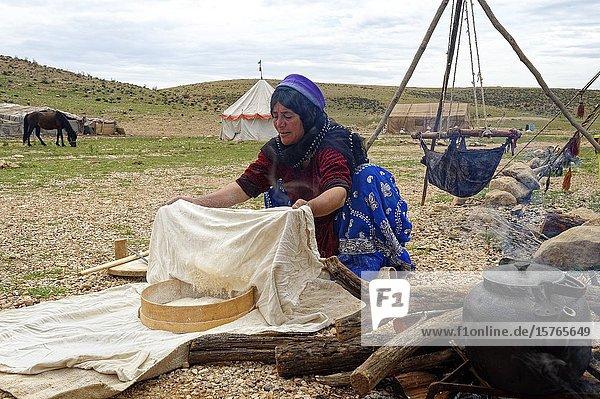 Bread preparation in Qashqai nomads camp  Fars Province  Iran.