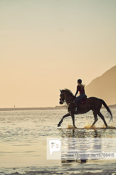 Young woman horseback riding in tranquil sunset ocean surf