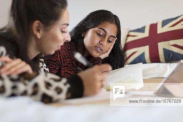 Teenage girls studying on bed