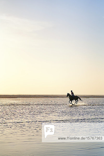 Young woman horseback riding running in ocean surf
