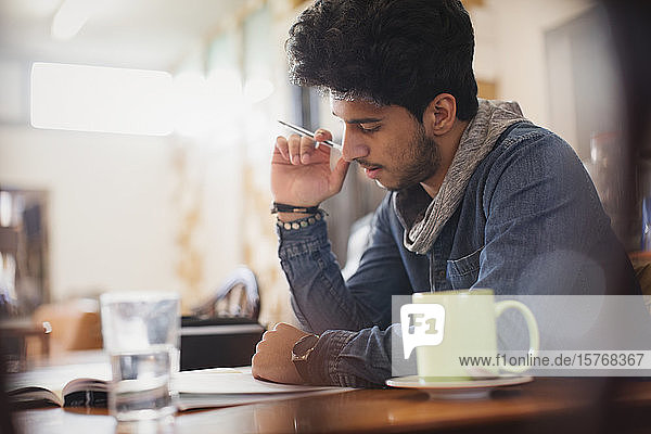 Focused young male college student studying in cafe