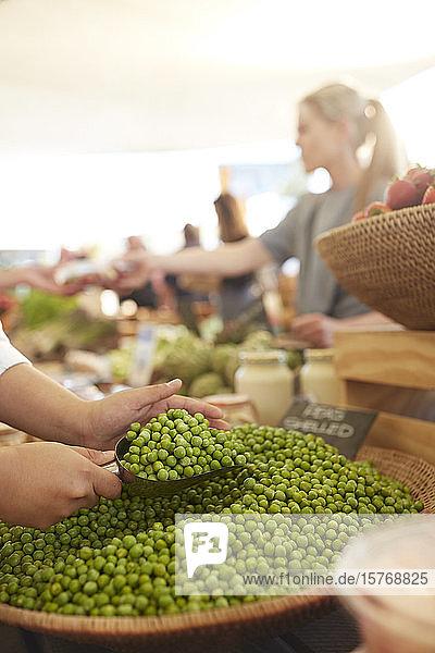 Frau schöpft gesch�llte Erbsen auf dem Bauernmarkt