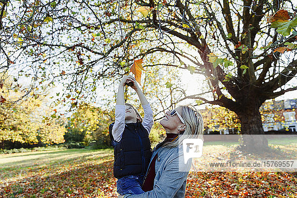 Carefree mother lifting son reaching for autumn leaf in idyllic park
