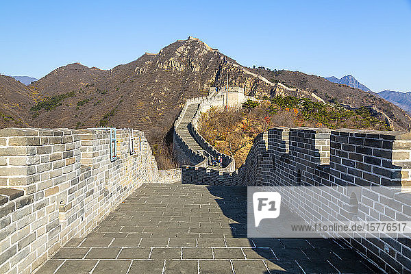 View of Great Wall of China at Huanghua Cheng (Yellow Flower)  UNESCO World Heritage Site  Xishulyu  Jiuduhe Zhen  Huairou  People's Republic of China  Asia